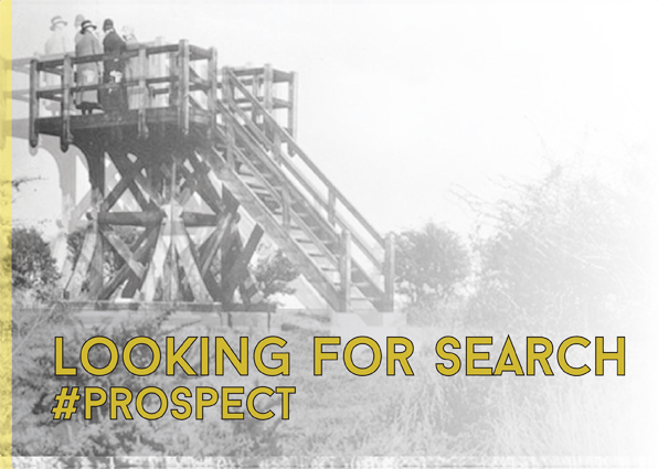 Looking for Search Prospect